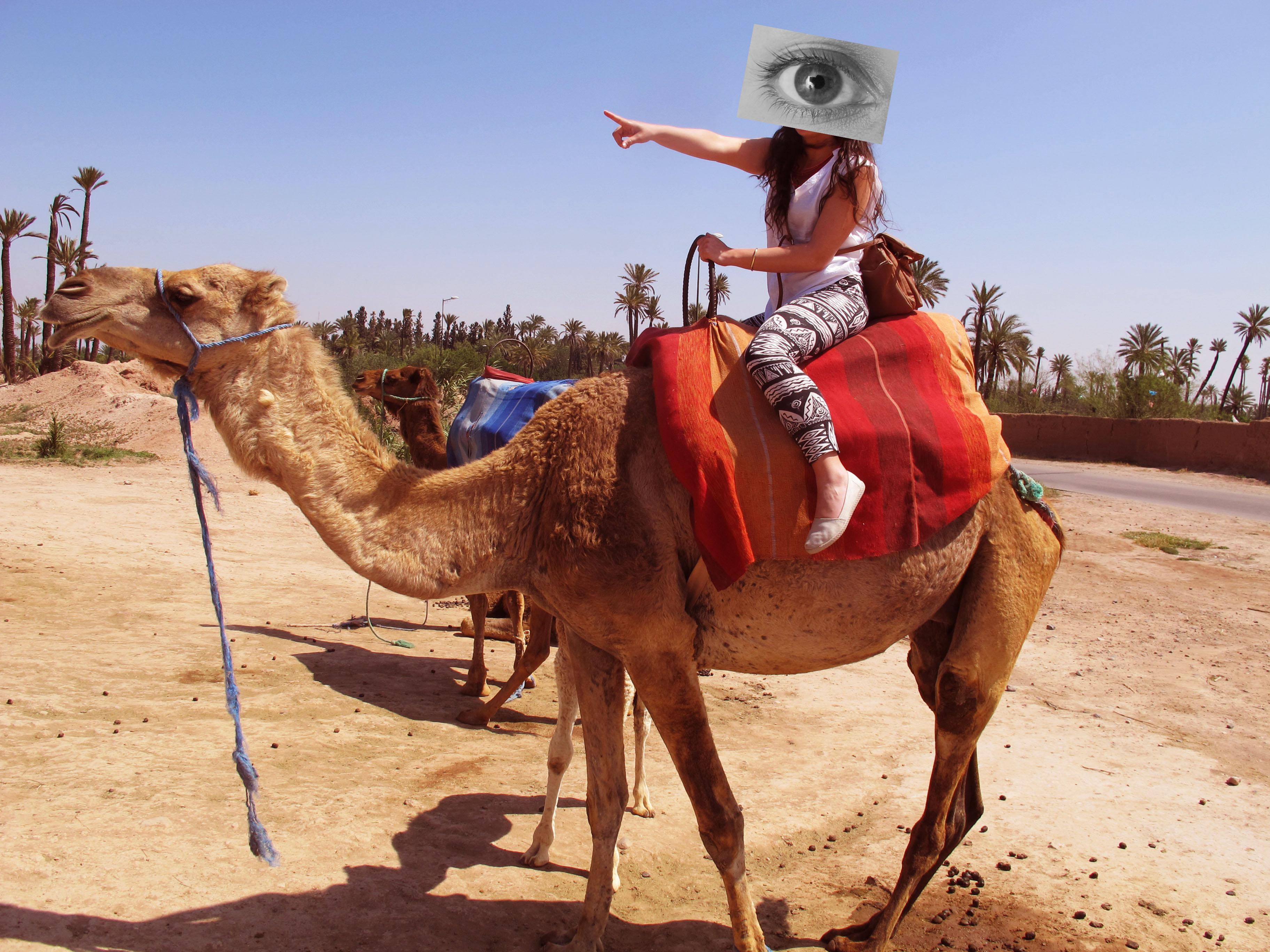 Marrakech.Visybilidad (1)